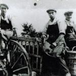 les 3 frères Beaudouin...