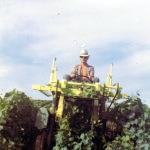 René en 1965